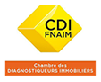 Diagnostic immobilier Seurre